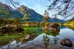 Acqua del turchese e scena degli alberi e del lago Immagini Stock