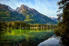 Acqua del turchese e scena degli alberi e del lago Immagini Stock Libere da Diritti