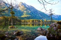 Acqua del turchese e scena degli alberi e del lago Immagine Stock Libera da Diritti