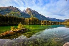 Acqua del turchese e scena degli alberi e del lago Fotografia Stock
