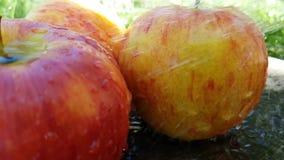Acqua deliziosa scorrente di rosso di Apple, estate del movimento lento archivi video