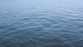 Acqua dell'oceano Pacifico stock footage