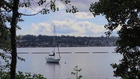 Acqua della barca a vela ed il litorale del lago Washington video d archivio