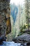 Acqua della cascata del chiacchierio, pareti della roccia, alberi Rocky Mountains, Canada Fotografia Stock Libera da Diritti
