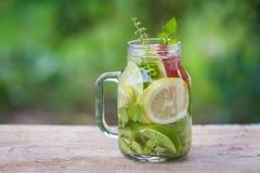 Acqua della disintossicazione con il kiwi, il limone e la mela rossa Fotografia Stock
