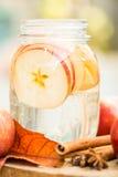 Acqua della disintossicazione con le mele Composizione in autunno con le foglie ed il appl Fotografie Stock Libere da Diritti