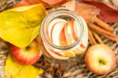 Acqua della disintossicazione con le mele Composizione in autunno con le foglie ed il appl Fotografie Stock