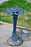 Acqua della fontanella Fotografia Stock Libera da Diritti