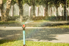 Acqua dello spruzzatore nel giardino Fotografia Stock Libera da Diritti