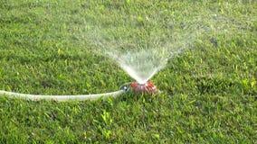 Acqua dello spruzzo dell'impianto di irrigazione di cura del prato inglese sul video delle azione dell'erba verde stock footage