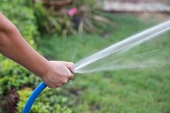 acqua dello spruzzo per erba iarda dal tubo di gomma Fotografie Stock