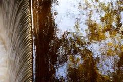 Acqua di caduta e la riflessione delle filiali e del cielo di albero Fotografie Stock