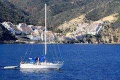 Acqua di Catalina Island Sailboat Sailing Blue Fotografie Stock Libere da Diritti