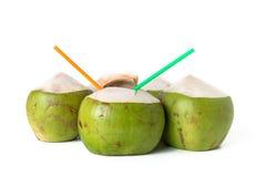 Acqua di cocco fresca con la noce di cocco fotografia stock
