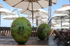 Acqua di cocco nel ristorante della spiaggia fotografia stock