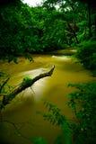 Acqua di fiume Immagini Stock