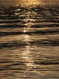 Acqua di fiume Immagine Stock