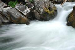 Acqua di fiume precipitante sopra le rocce muscose immagine stock libera da diritti
