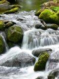 Acqua di fonte Immagini Stock