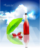 Acqua di frutti Immagine Stock Libera da Diritti