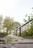 Acqua di legno della natura del ponte fotografia stock libera da diritti
