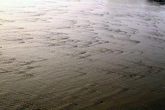Acqua di mare Immagine Stock