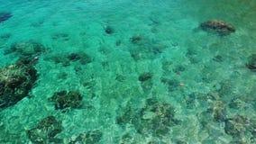 Acqua di mare calmo vicino alle pietre Acqua di mare blu pacifica e massi grigi nel posto perfetto per immergersi su Koh Tao Isla archivi video