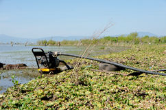 Acqua di pompaggio dal lago Immagine Stock Libera da Diritti