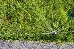Acqua di spruzzatura della testa dell'irrigatore automatica sopra erba verde Immagine Stock Libera da Diritti