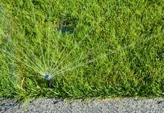 Acqua di spruzzatura della testa dell'irrigatore automatica sopra erba verde Fotografia Stock Libera da Diritti