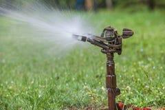 Acqua di spruzzatura dello spruzzatore in parco Immagini Stock