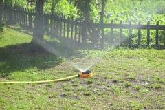 Acqua di spruzzatura dello spruzzatore sopra erba Immagini Stock