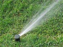 Acqua di spruzzatura dello spruzzatore su erba Immagini Stock