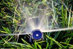 Acqua di spruzzatura dello spruzzatore sull'erba del prato inglese Fotografie Stock Libere da Diritti