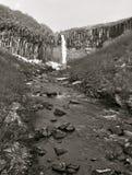 Acqua di Svartifoss nell'inverno in anticipo Immagine Stock Libera da Diritti