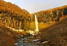 Acqua di Svartifoss nell'inverno in anticipo Fotografia Stock