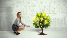 Acqua di versamento della donna di affari sull'albero crescente della lampadina Fotografie Stock