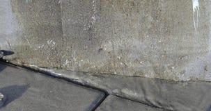 Acqua di versamento sulle mattonelle
