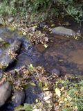 Acqua dolce cristallina, traccia rocciosa dell'acqua Immagine Stock Libera da Diritti