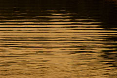 Acqua dorata Fotografie Stock