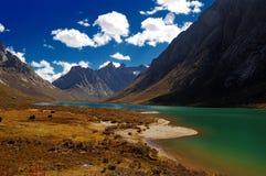 Acqua e montagne verdi del lago Fotografia Stock