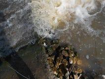 Acqua e pietre Fotografia Stock Libera da Diritti