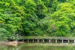 Acqua e ponte verdi nel picco del castello Fotografia Stock Libera da Diritti