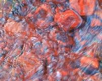 Acqua ferrosa di colore rosa di un fiume Fotografia Stock Libera da Diritti