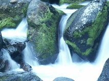 Acqua fredda Fotografia Stock
