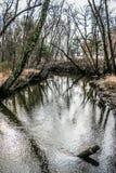 Acqua fredda Fotografie Stock