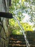 Acqua fredda cristallina della montagna nella foresta immagini stock