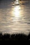Acqua frizzante con le luci del verticale di tramonto Immagini Stock Libere da Diritti