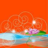 Acqua-giglio lilla su una priorità bassa arancione Fotografia Stock Libera da Diritti