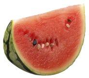 Acqua-melone fotografia stock libera da diritti